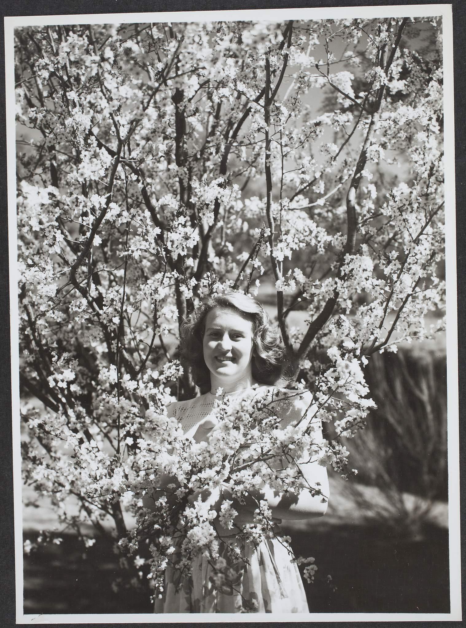 pics Marjorie Nelson