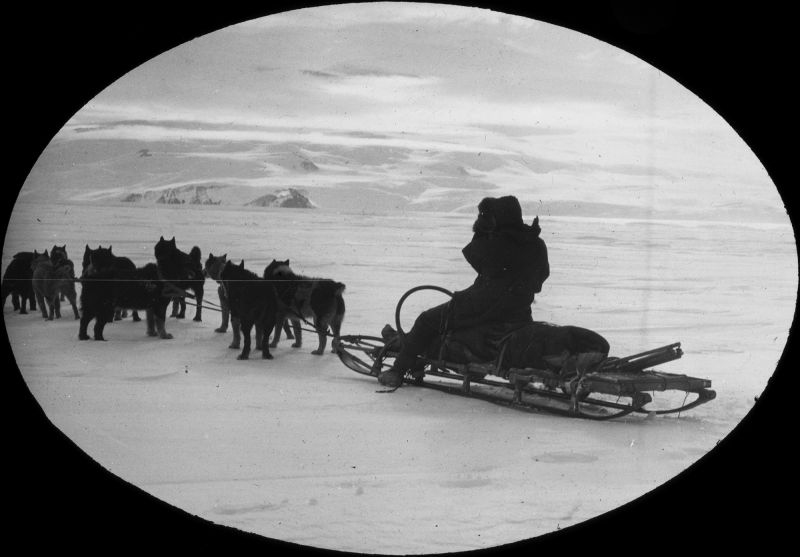 1980.0030.00426  Sledge and dog team, c.1911-1913, Raymond Priestley Lantern Slides Collection (Department of Geology, University of Melbourne)